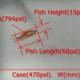 小型魚類モデル生物の動線解析,寸法計測を可能に