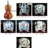 ヴァイオリンの駒の光弾性観察