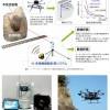 レーザー振動計測と三次元画像計測を 落石の危険度評価に応用