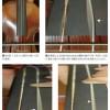 演奏中のヴァイオリン弦の振動