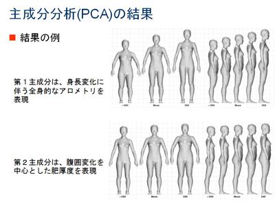図4 全身体形のBoundary Family