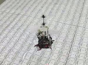 図6 空中静止維持実験中の飛翔ロボット